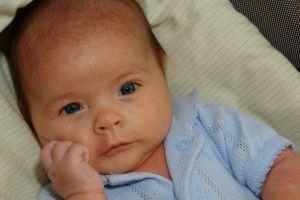 948944_newborn.jpg