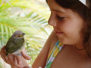 952712__bird_girl_2.jpg